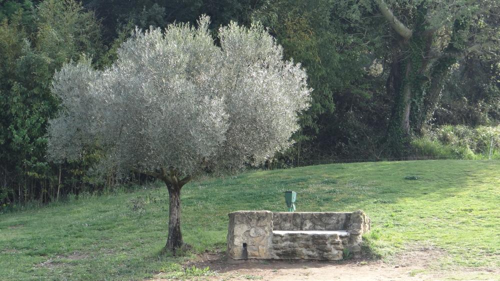 ... Rencontres européennes en Provence à l'écran | Mairie de Miramas